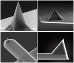 Non-Contact / Tapping Mode AFM Probes